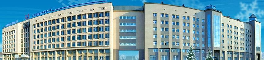 Где заказать курсовую и дипломную работу в Казани  дипломную работу